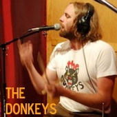 The Donkeys Live At Luxury Wafers