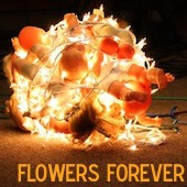 Flowers Forever Live At Luxury Wafers